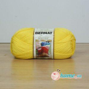 Len nhap khau Bernat - Satin-3