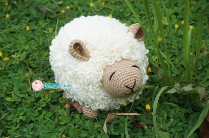 Bộ thú 31- cừu xù lông